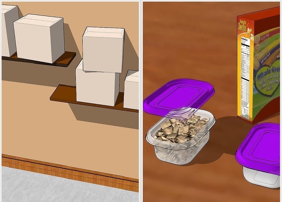 Usuń źródła żywności z domu.