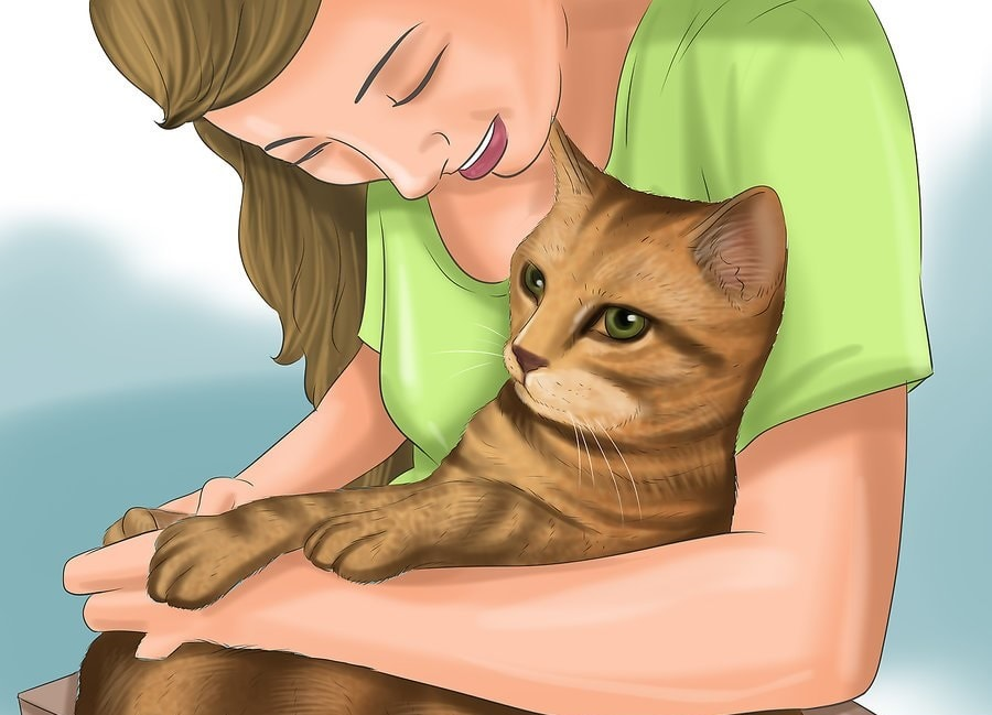 Utrzymaj kontrolę nad swoim kotem.